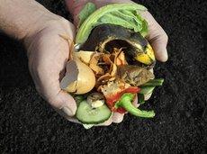 Best Cheap Compost Bins