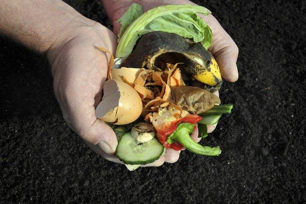 compost in hands over dirt