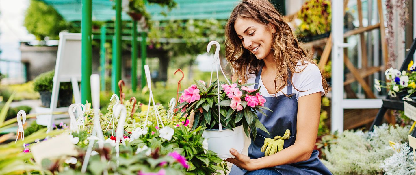 Lowes vs  Home Depot for Plants & Gardening | Cheapism com