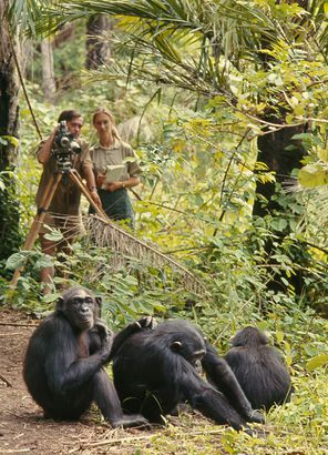 Becoming Jane: The Evolution of Jane Goodall