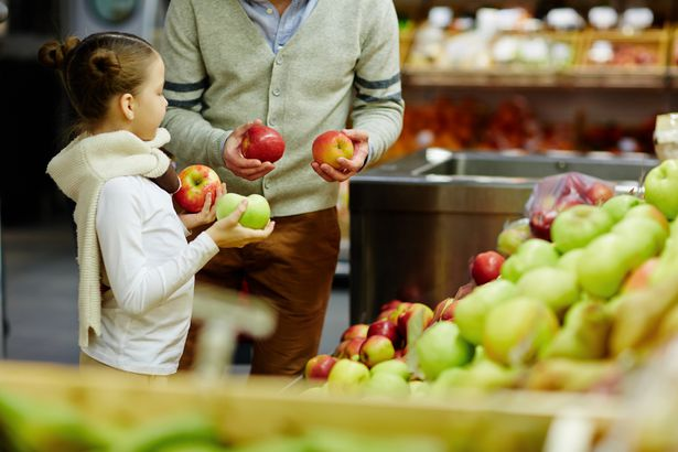 kid choosing apples