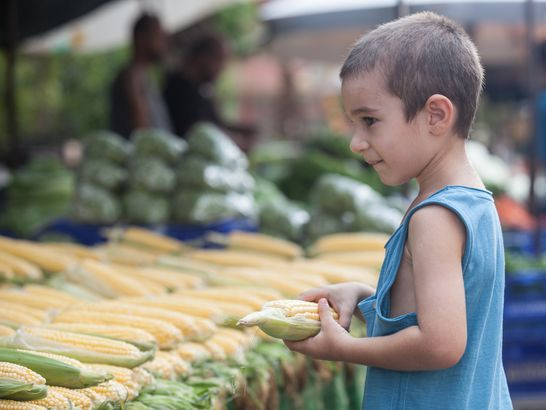 little boy with corn at market