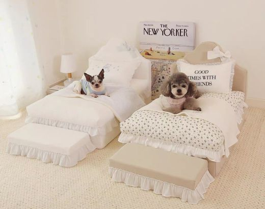 Luxury dog bed and step