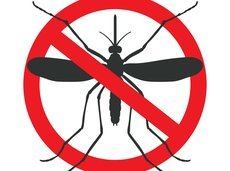 mosquito_traps_1_2500