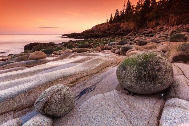 Otter Cliffs at sunset, Acadia