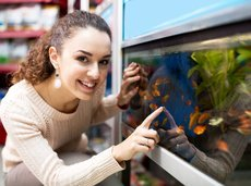 woman in a pet store looking at fish