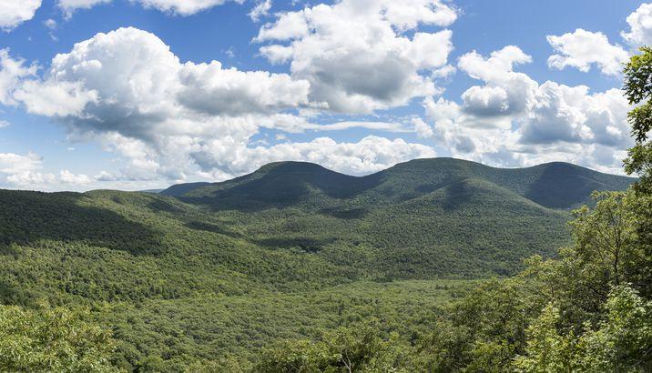 Rooster Comb Ridges, Catskills