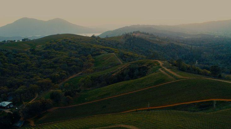 Shannon Ridge Winery, Lower Lake