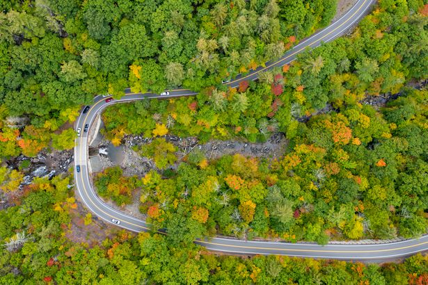 Spruce Creek in Catskills