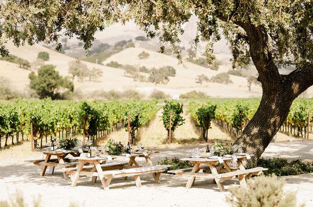 Zaca Mesa Winery, Los Olivos